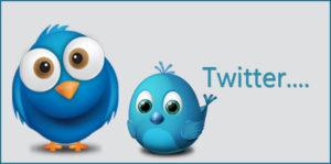 Nine Nano Twitter Marketing Strategy Destructors 2016