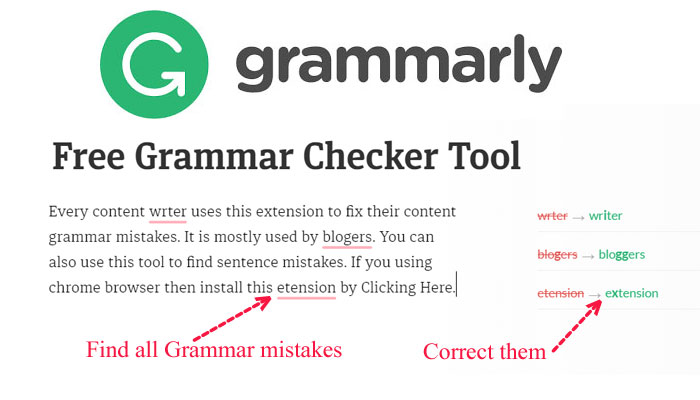 free grammar checker on site SEO tool